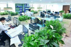 Văn phòng xanh là gì?